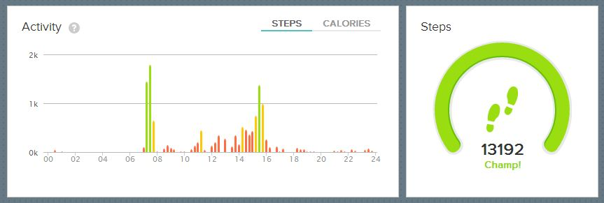 Saturday fitbit :-)