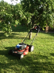 Our lawnmower