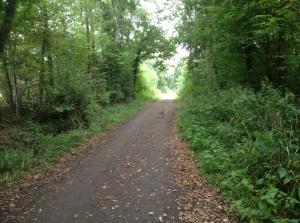autnum path
