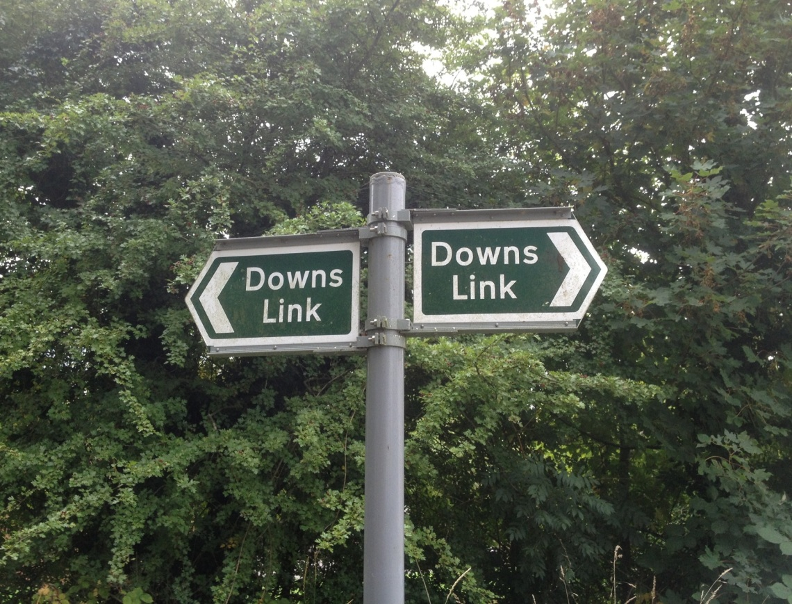 downs link