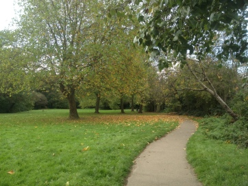walk autumn