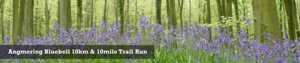 Angmering-Bluebell