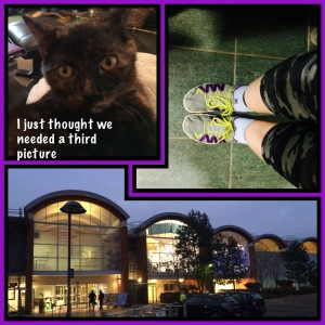 no...technically the kitten didn't come with me to the gym...