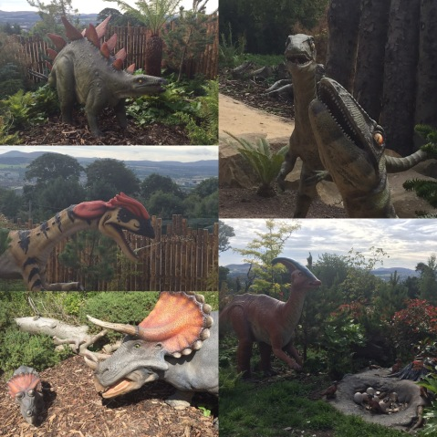 unexpected dinosaurs